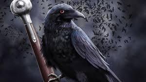 corbeau bureau corbeau sur l épée hd papier peint de bureau écran large haute