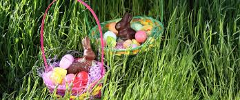 bunny baskets how a bunny baskets and eggs got connected with easter abc news