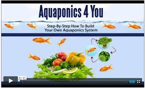 john fay u0027s aquaponics 4 you system review free pdf download