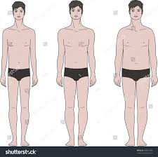 vector illustration male figure different body stock vector
