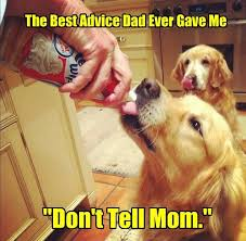 Advice Dog Memes - the best advice dad ever gave me i has a hotdog dog pictures