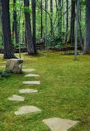 How To Plant A Garden In Your Backyard Best 25 Growing Moss Ideas On Pinterest Moss Garden Moss Paint