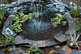 outdoor and patio cute round backyard koi pond ideas mixed with