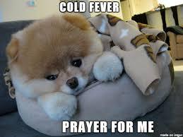 Fever Meme - cold fever meme on imgur