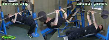 Bench Press For Beginners Beginners Weight Training Routine