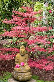 japanese garden japanese garden ganna walska lotusland