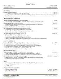 resumes for business analyst positions in princeton sle resumes junior student career services resume cv advice