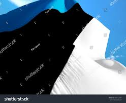 Estonian Flag Estonia Flag 3d Waving Flag Design Stock Illustration 703722547