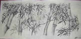 bamboo trees u2013 lespritsauvage