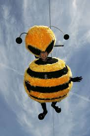 seinfeld u0027s bee movie cannes stunt comingsoon net