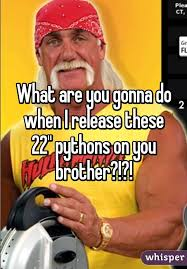 What You Gonna Do Meme - are you gonna do when i release these 22 pythons on you brother