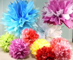 2 and a whole lot of pretty tissue paper flowers whisker