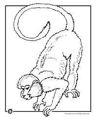 monkey coloring pages kids print coloring