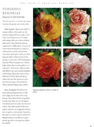 Where To Buy Edible Flowers - the edible flower garden edible garden series rosalind creasy