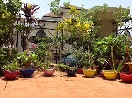 Gardening Ideas For Small Balcony by Design Decor U0026 Disha An Indian Design U0026 Decor Blog Hanging