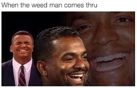 Best Weed Memes - the 46 best stoner memes on the internet stoner memes and weed