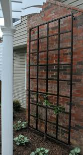 Ideas For Metal Garden Trellis Design Metal Trellis Metal Trellis Design Ideas Metal Trellis Panels