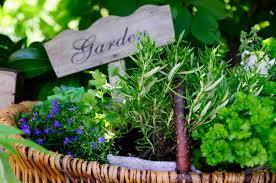 garden design garden design with how to start a window herb