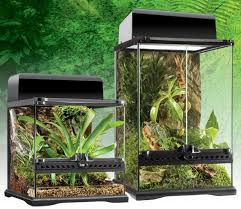 exo terra mini terrarium evolution reptiles