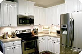 Kitchen Cabinets Fetching Lowes Shaker Style Kitchen Cabinets Shining Kitchen Design