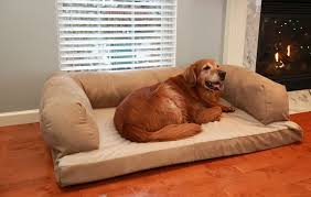 review beasley u0027s couch dog bed dogs recommend