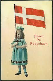 Dansk Flag Hilsen Fra Danmark