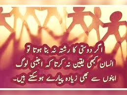 quotes about love in christmas 100 education quotes urdu 100 quote about love urdu 249
