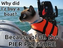 Cat Meme Boat - pier pressure cat meme shared by yanito freminoshi