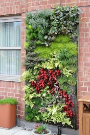 126 best vertical gardening images on pinterest vertical gardens