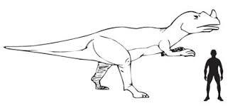 theropod dinosaurs a range of biting styles