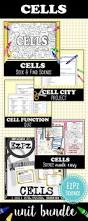 best 25 science cells ideas on pinterest cells activity cell