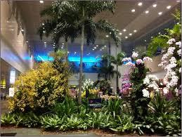 Indoor Container Gardening - terrific indoor gardening ideas 62 indoor plant container ideas
