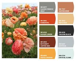 colorsnap by sherwin williams u2013 colorsnap by pamela c