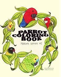 amazon com 1 parrot coloring pages bird coloring book bird
