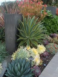 fique a conhecer as nossas dicas de jardinagem em www