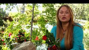 make a miniature garden with sun parasol garden crimson youtube
