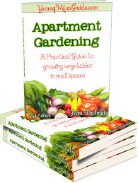 apartment gardening step by step guide for a patio vegetable garden