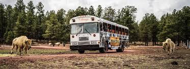 Arizona wildlife tours images Wild ride bus tour bearizona wildlife park jpg