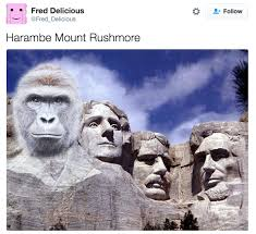 South Dakota travel meme images The cincinnati zoo is not pleased with the harambe jokes png