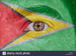 Gayana Flag Flag Of Guyana Stock Photos U0026 Flag Of Guyana Stock Images Alamy
