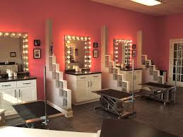 Spa Decorating Ideas For Business Best 25 Dog Grooming Business Ideas On Pinterest Pet Grooming