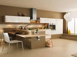 couleur de cuisine mur couleur de cuisine galerie et cuisine mur couleur contemporary us