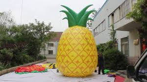 Halloween Inflatable Arch by Inflatable Pineapple Youtube
