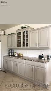 what color kitchen cabinets go with agreeable gray walls 10 best gray paint colors by sherwin williams tag tibby