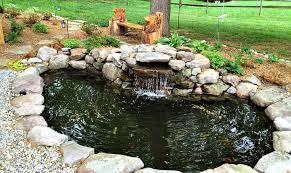 Backyard Pond Images How To Clean Your Backyard Koi Pond Angie U0027s List