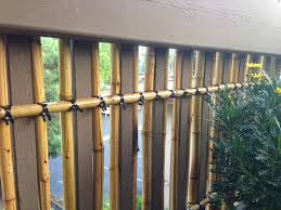 balcony container garden bamboo privacy screen trellis