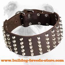 Comfortable Dog Collars Purchase Wide Studded Leather Bulldog Collar Dog Walking Gear