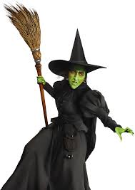 Wicked Witch Halloween Costume Wizard Oz Dark Circles Hair Style Extra Large Jaw
