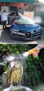 Bugatti Meme - bugatti chiron vs owl 9gag
