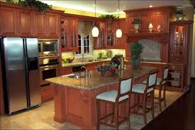 Kitchen Amazing What Is Kitchen Cabinet Refacing Refacing